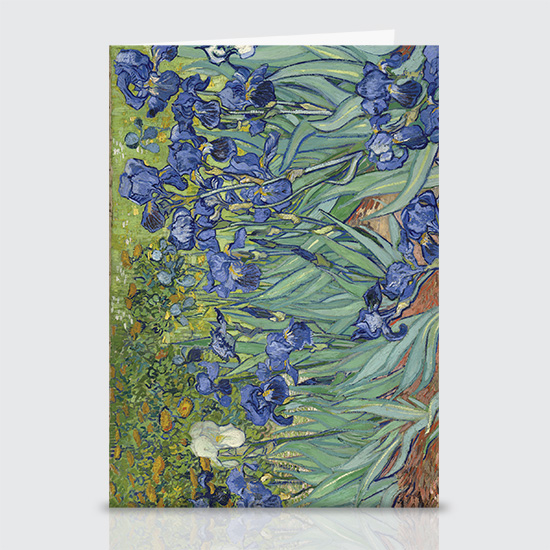 Irises - Greeting Cards