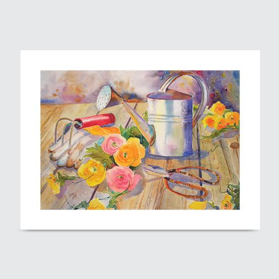 Rununculus - Art Print