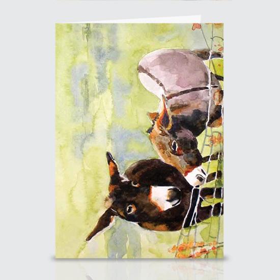 Fenced Donkeys - Greeting Cards