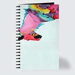 Painted Palatino - Journal - Front