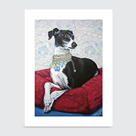 Italian Grayhound - Art Print