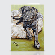 Chocolate Lab - Greeting Cards